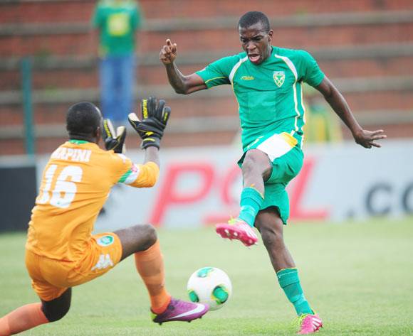 Philani Shange of Golden Arrows  and Tapuwa Kapini of AmaZulu during the Absa Premiership 2013/14 football match between Golden Arrows and AmaZulu at the King Zwelithini Stadium in Durban, Kwa-Zulu Natal on the 16th of December 2013