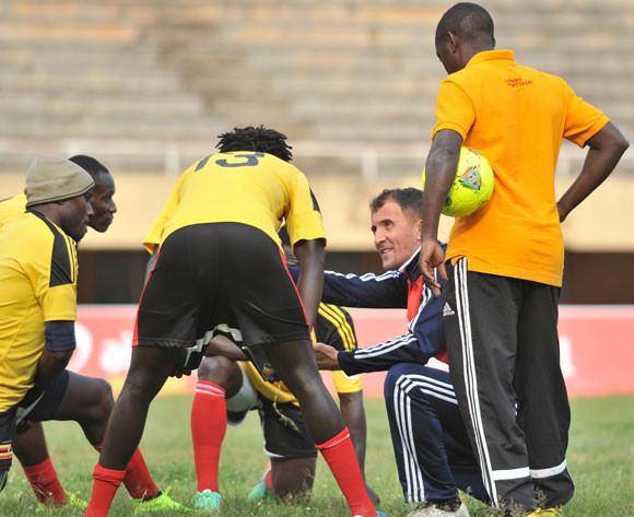 Cranes abandon plans to camp in Senegal