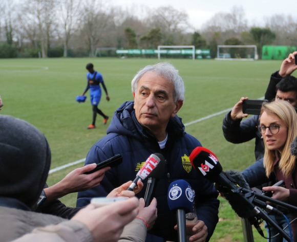 Vahid Halilhodzic favourite to take control of Morocco